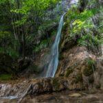 Immagine di una cascata all'interno di un bosco