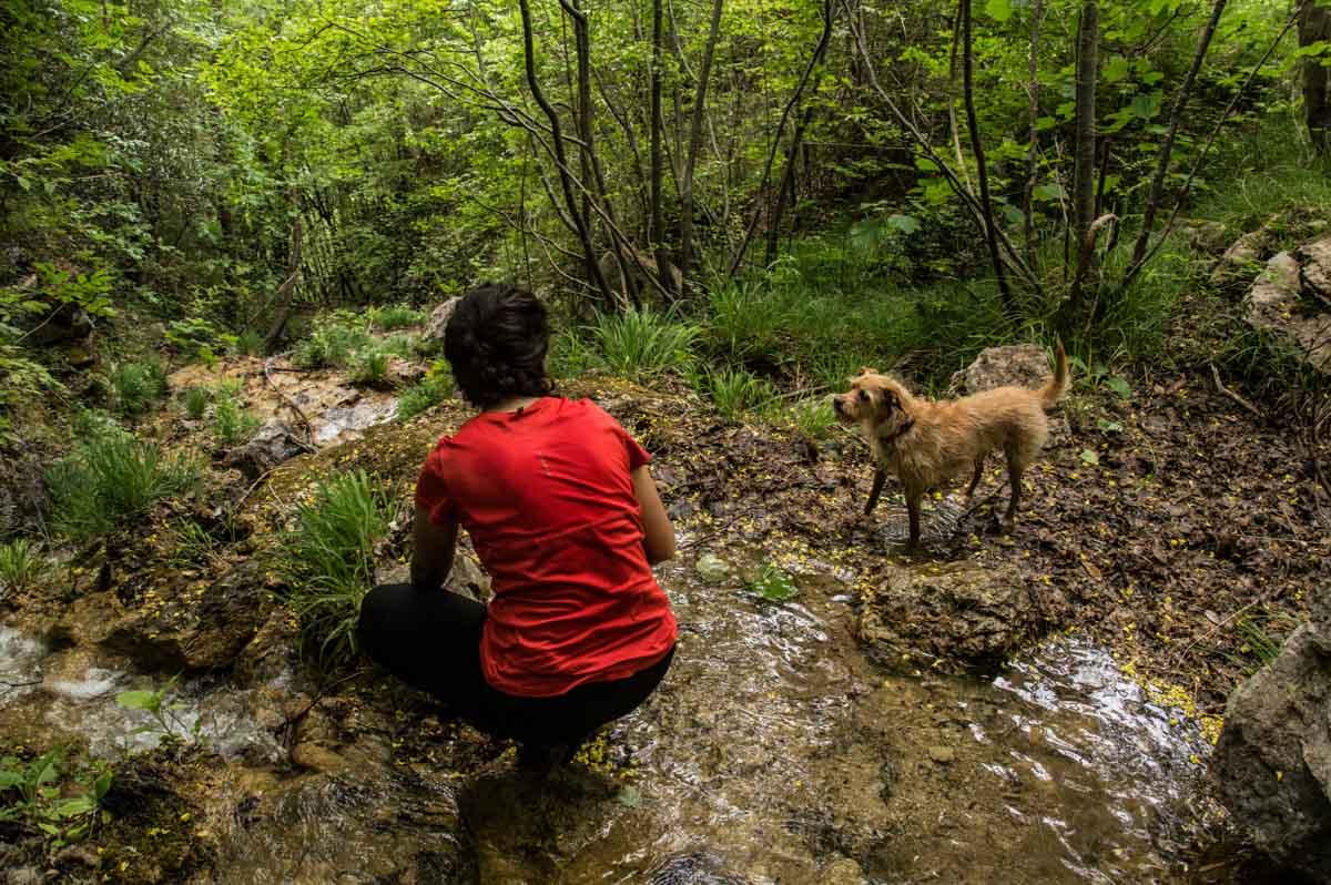 Escursionista con cane nel bosco della Valle delle Cascate