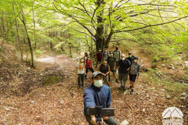 immagine di un gruppo di escursionisti nelle vicinanze di un grande faggio