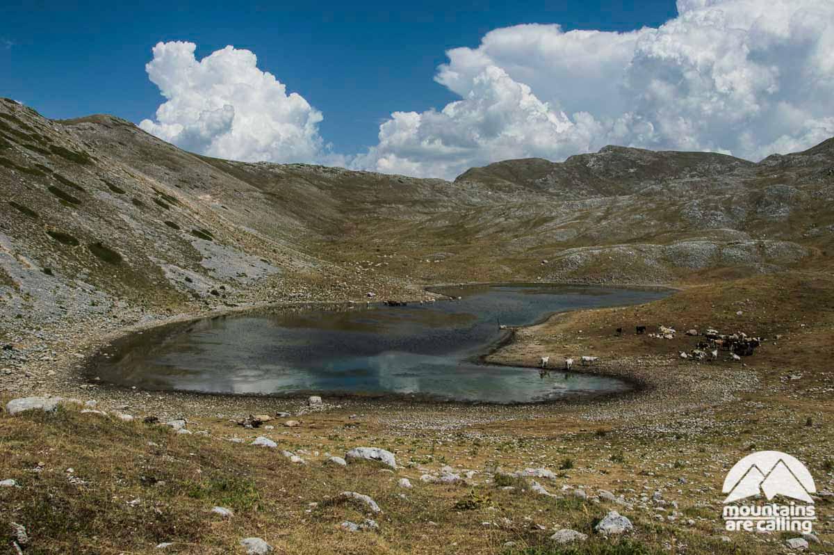 Immagine di un lago di montagna con pascoli