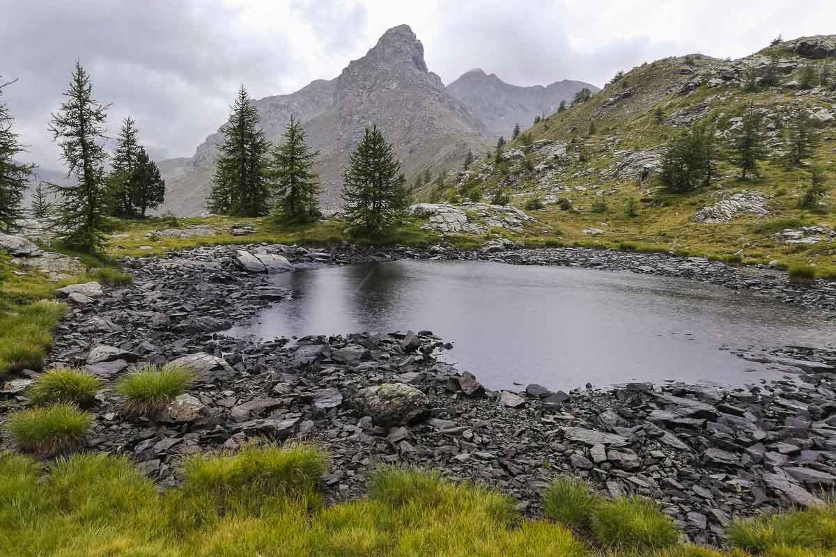 Lago alpino con sullo sfondo delle montagne e degli alberi