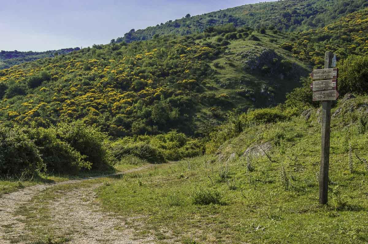 Cartelli escursionistici su sentiero