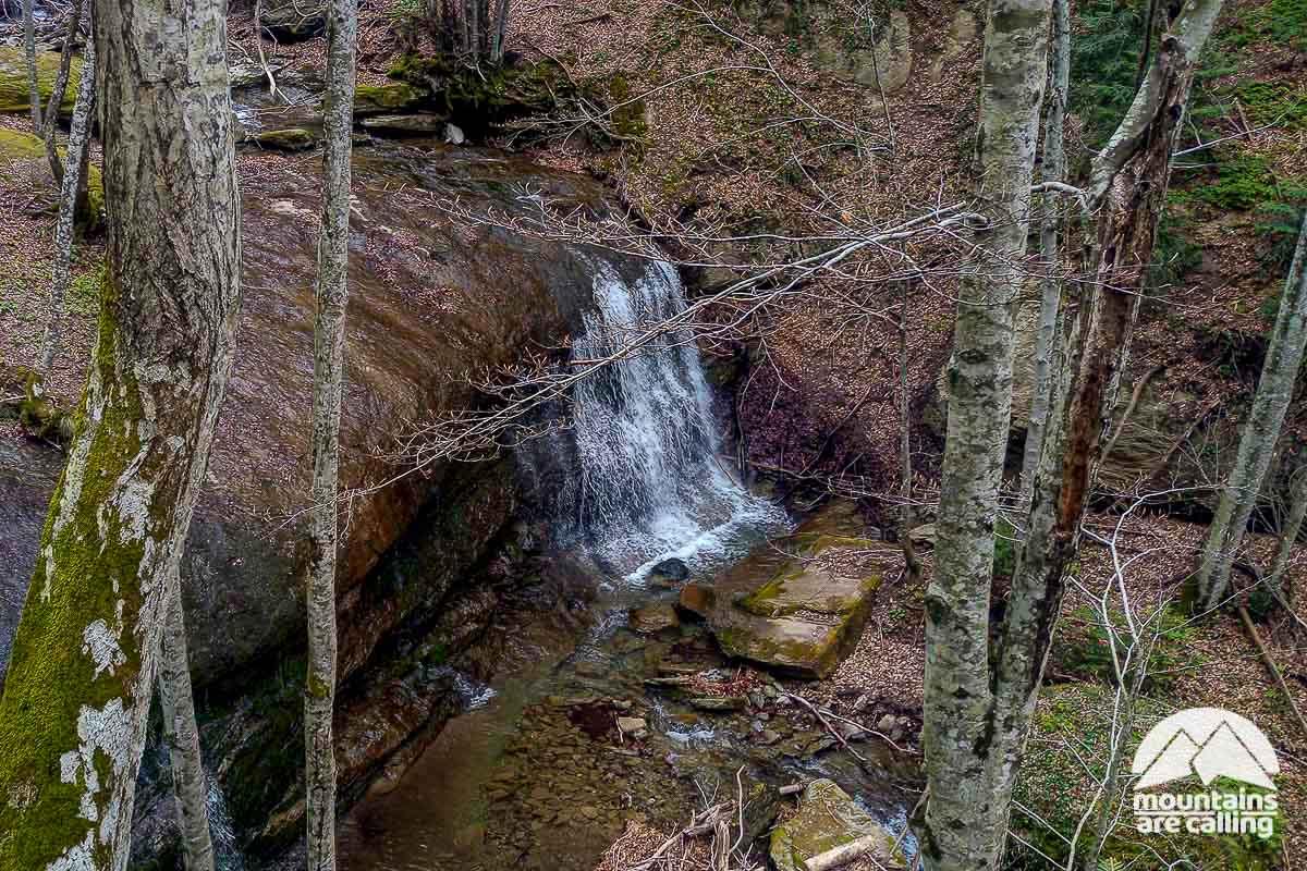 Torrente con cascata all'interno del bosco di faggi di Camaldoli