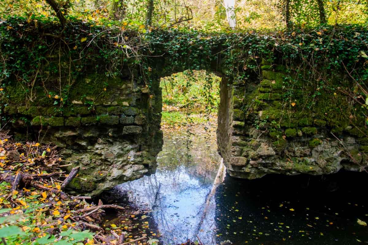Ponte di pietra all'interno di un fitto bosco