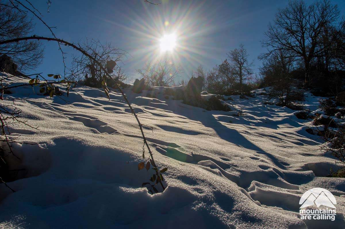 Solo e neve