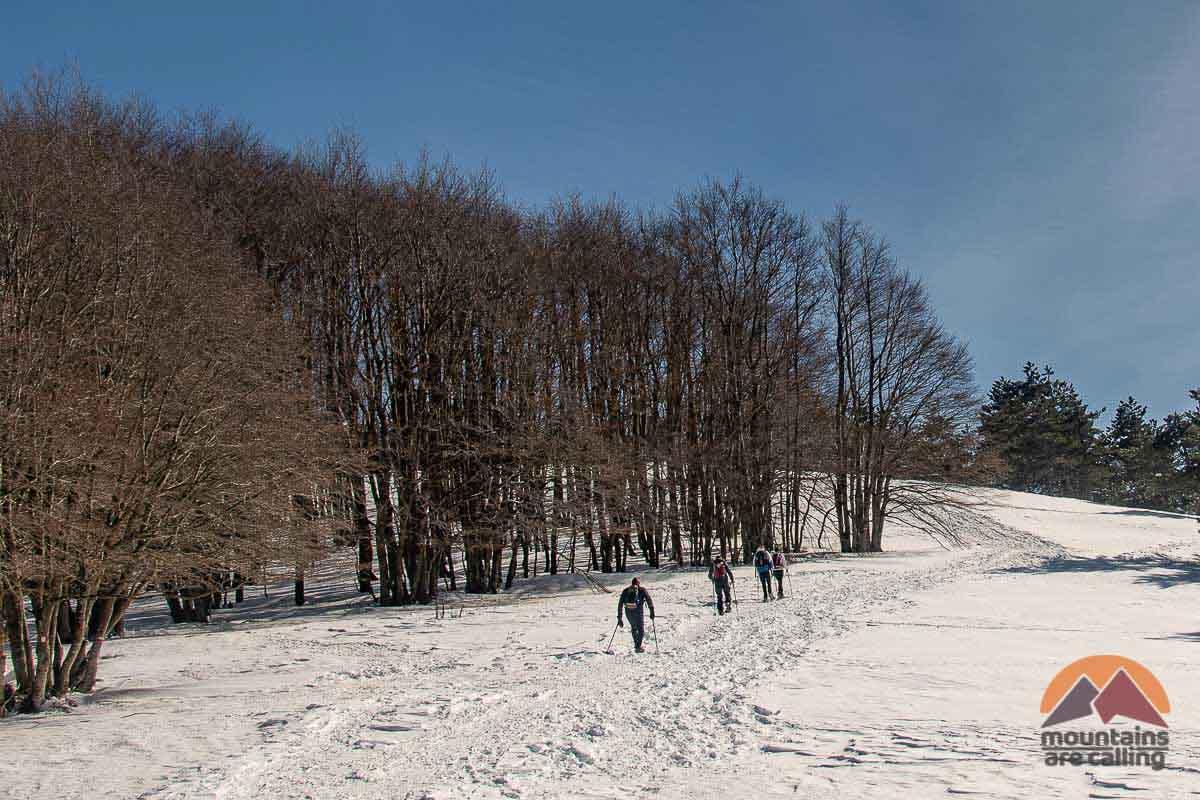 Ciaspolatori sulla neve