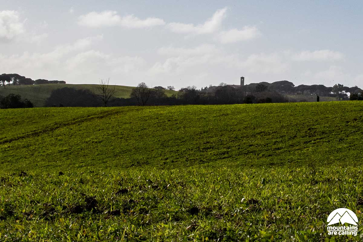 Parto verde della campagna romana