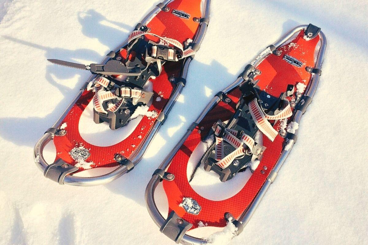 Ciaspole poggiate sulla neve