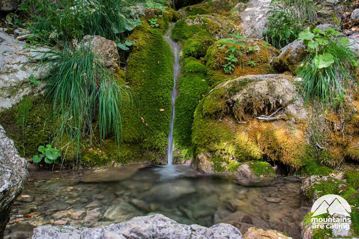 sorgente di acqua naturale che sgorga in montagna
