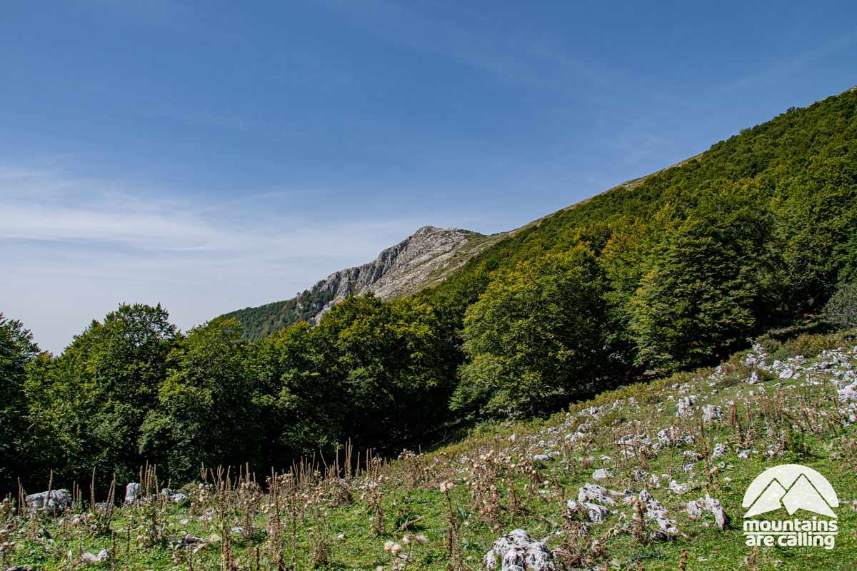 Una montagna con le pendici circondate da un bosco