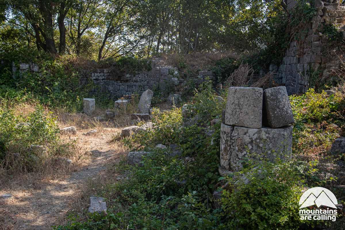 antichi ruderi coperti dalla vegetazione