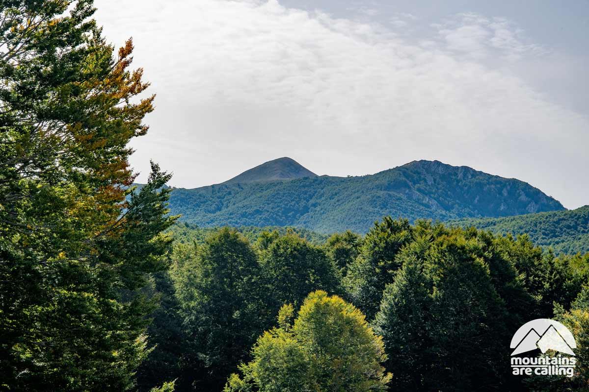 Montagna circondata da un ampio bosco di faggi